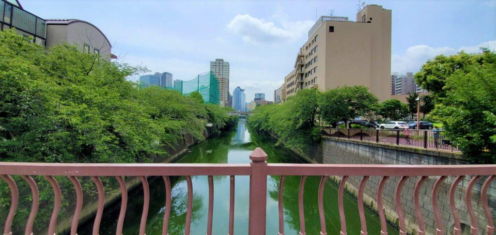 田道橋から見た目黒川